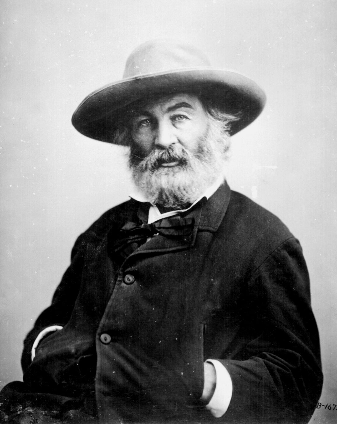 Walt Whitman by Mathew Brady